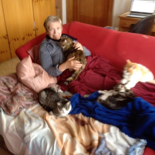 Do you love cats? – Here some true stories of my 25 years with cats.